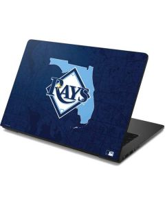 Tampa Bay Rays Home Turf Dell Chromebook Skin