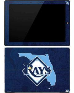 Tampa Bay Rays Home Turf Surface 3 Skin