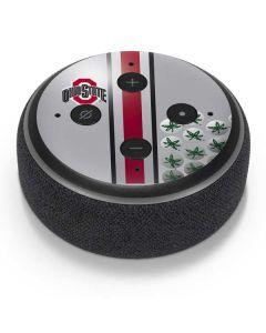 Ohio State University Buckeyes Amazon Echo Dot Skin