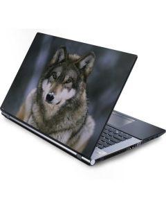 Gray Wolf at International Wolf Center Generic Laptop Skin