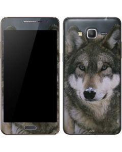 Gray Wolf at International Wolf Center Galaxy Grand Prime Skin