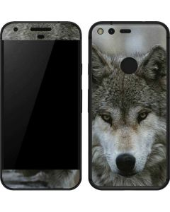 Stoic Gray Wolf Google Pixel Skin