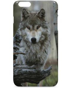 Stoic Gray Wolf iPhone 6/6s Plus Lite Case