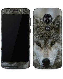 Stoic Gray Wolf Moto E5 Play Skin