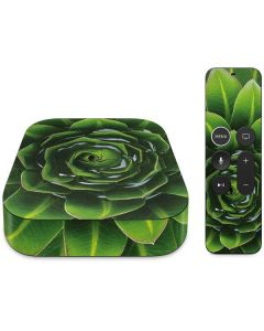Succulent Plant Apple TV Skin