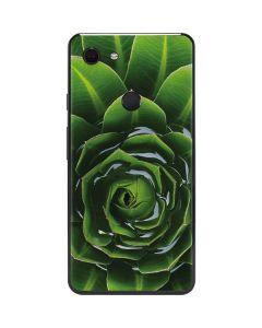 Succulent Plant Google Pixel 3 XL Skin
