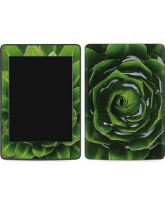 Succulent Plant Amazon Kindle Skin