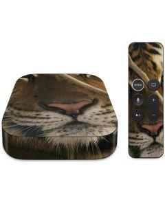 Tiger Portrait Apple TV Skin