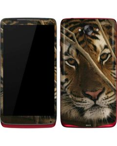 Tiger Portrait Motorola Droid Skin