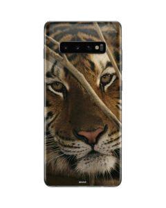 Tiger Portrait Galaxy S10 Plus Skin