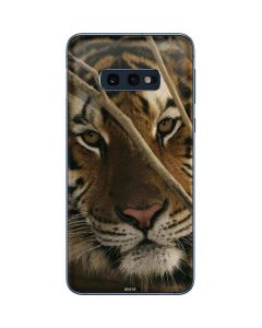 Tiger Portrait Galaxy S10e Skin
