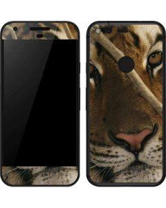 Tiger Portrait Google Pixel Skin