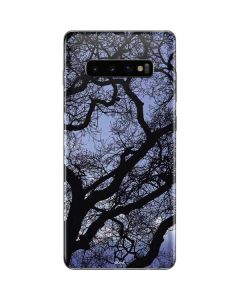 Tree Branches Galaxy S10 Plus Skin