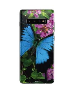 Ulysses Butterfly Lands On Pink Flowers Galaxy S10 Plus Skin
