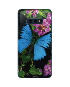 Ulysses Butterfly Lands On Pink Flowers Galaxy S10e Skin