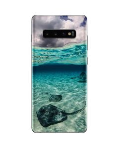 Underwater Sting Rays Galaxy S10 Plus Skin