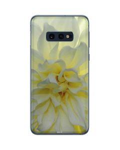 White Dahlia Galaxy S10e Skin