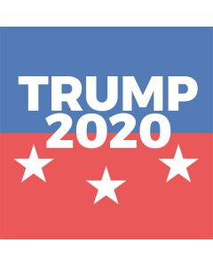 Trump 2020 PlayStation VR Skin