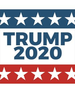Trump 2020 Red White and Blue Asus X202 Skin