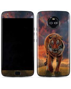 Rising Tiger Moto X4 Skin