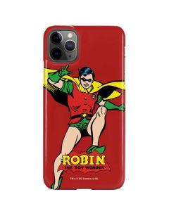 Robin Portrait iPhone 11 Pro Max Lite Case