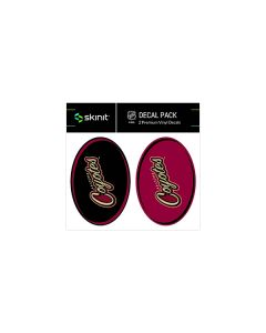 Arizona Coyotes Small Decal Pack