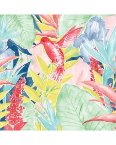 Spring Bird of Paradise Amazon Kindle Skin