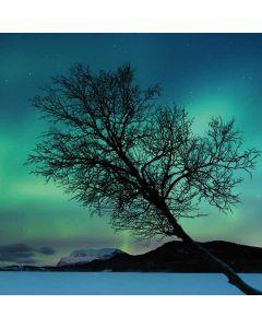 Aurora Borealis over Sandvannet Lake Apple MacBook Pro Skin