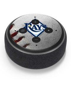 Tampa Bay Rays Game Ball Amazon Echo Dot Skin