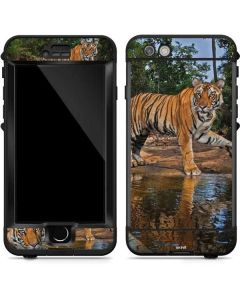 Tiger Cubs Playing at a Waterhole LifeProof Nuud iPhone Skin
