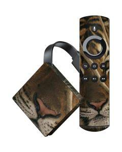 Tiger Portrait Amazon Fire TV Skin