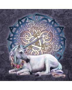 Celtic Unicorn Playstation 3 & PS3 Slim Skin