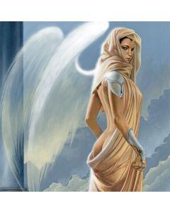 Fairy Goddess Acer Chromebook Skin