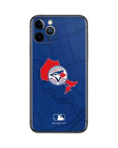 Toronto Blue Jays Home Turf iPhone 11 Pro Skin