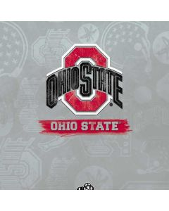 Ohio State Distressed Logo Gear VR with Controller (2017) Skin