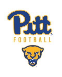 University of Pittsburgh Football Playstation 3 & PS3 Skin