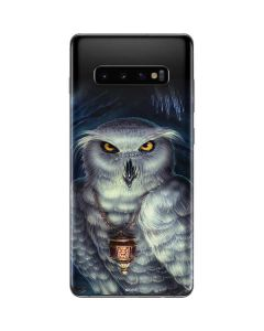 Wizards Messenger Owl Hedwig Galaxy S10 Plus Skin