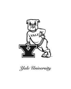 Yale Bulldogs Handsome Dan Zenbook UX305FA 13.3in Skin
