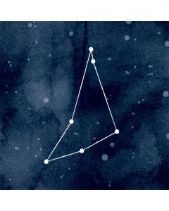 Capricorn Constellation Apple MacBook Air Skin