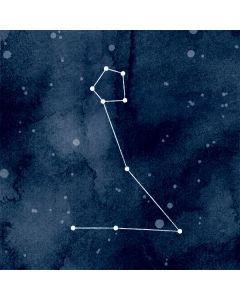 Pisces Constellation Apple MacBook Air Skin