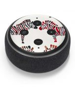 Rainbow Zebras Amazon Echo Dot Skin