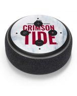 Alabama Crimson Tide Net Amazon Echo Dot Skin