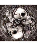 Skulls and Roses Amazon Echo Dot Skin