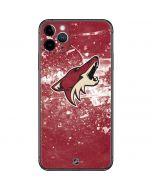 Arizona Coyotes Frozen iPhone 11 Pro Max Skin