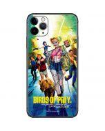 Birds of Prey iPhone 11 Pro Max Skin