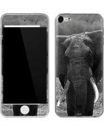 Black and White Elephant Apple iPod Skin