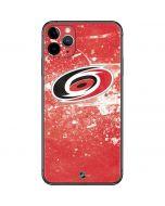 Carolina Hurricanes Frozen iPhone 11 Pro Max Skin