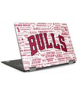 Chicago Bulls Historic Blast Dell XPS Skin