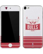 Chicago Bulls Static Apple iPod Skin