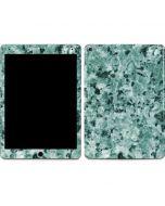 Graphite Turquoise Apple iPad Air Skin
